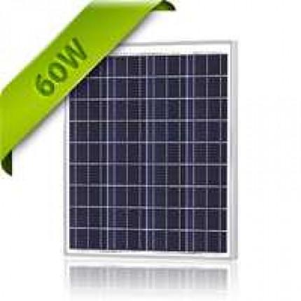 Solar Panel 60 Watt 12V Polycrystalline